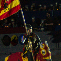 Red and Yellow Knight
