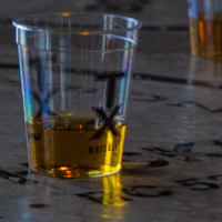 TX Whiskey In Shot Glasses